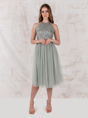 Maya Green Lily Embellished Halter Neck Midi Dress - STRAIGHT SIZE Wholesale Pack